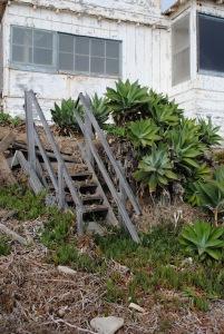 abandoned-beach-house